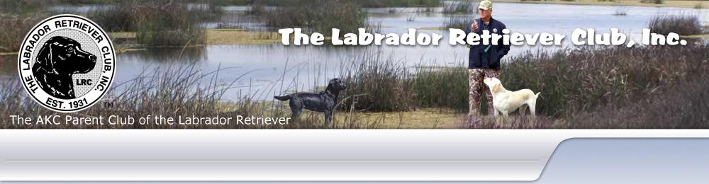 The Labrador Club